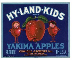 GENUINE APPLE CRATE LABEL HY-LAND KIDS COWICHE YAKIMA VINTAGE LADDER BLUE 1950S