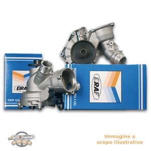 1 GRAF PA639 Pompa acqua meccanico COURIER Furgonato FIESTA Mk IV KA SOHO III