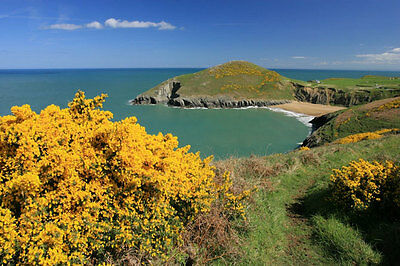 Short Break West Wales Holiday Cottage + Hot Tub.  Tues 13th - Sun 18th June
