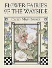 Flower Fairies of the Wayside by Cicely Mary Barker (Hardback, 2002)