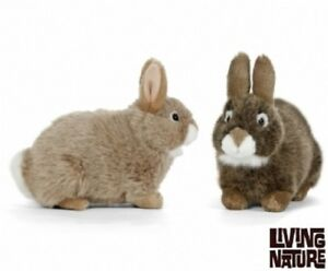 Full Range Of Specifications And Sizes An402 Soft Fluffy Bunny Stuffed Plush Brown Toy Famous For High Quality Raw Materials And Great Variety Of Designs And Colors Living Nature European Rabbit