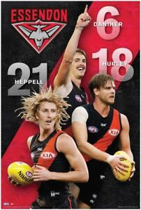 AFL-Essendon-Bombers-Players-POSTER-61x91cm-NEW-Heppell-Hurley-Daniher-footy