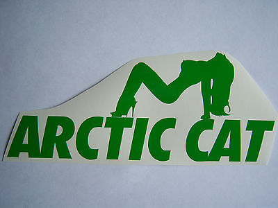 ARCTIC CAT STICKER artic lady ski DECAL trailer SNOWMOBILE sled ATV any COLOR