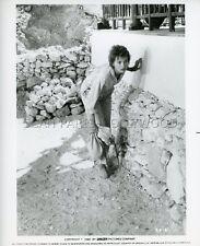 LESLEY-ANNE DOWN  SPHINX   1981 VINTAGE PHOTO ORIGINAL