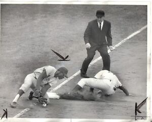 1964-Baseball-Wire-Photo-Joe-Amalfitano-Chicago-Cubs-Richie-Allen-Phillies