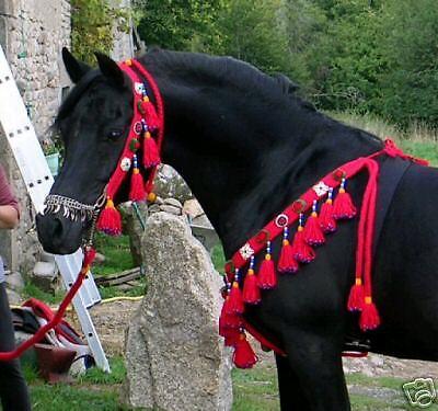Native árabe pecho Collar, Halter & Plomo  silla Tachuela