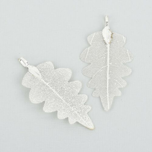 """2 Real Leaf Charms SILVER Oak Leaves 2.25/"""" to 2.5/"""" long chs5305"""