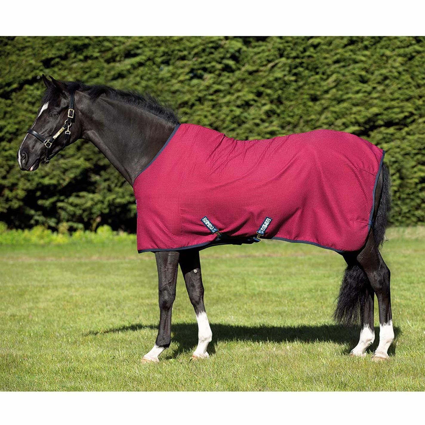 Rambo  Unisex Techni Waffle Cooler Horse Rug Breathable Classic  new exclusive high-end