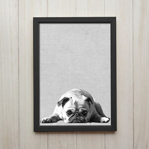 mops hund schwarz wei kunstdruck poster a4 tier foto geschenk deko bild druck ebay. Black Bedroom Furniture Sets. Home Design Ideas