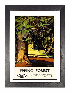 Epping Forest 2 Railway Vintage Poster Amazing Price Essex Advert Holiday Photo