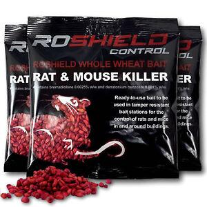 450 G Roshield Blé Entier Poison Rat Killer Control Appât Sachets (3 Packs)-afficher Le Titre D'origine Iygkpti9-10123601-139274243