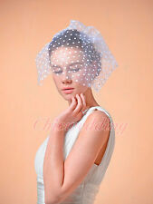 Newest White Wedding Birdcage Veil Bridal Fascinator Net Headpiece w/ Dot Detail