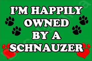 I'M HAPPILY OWNED BY A SCHNAUZER Dog Jumbo Fridge Magnet - Ideal Gift/Present