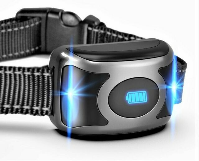 Replacement Collar for GROOVYPET Remote Dog Training Shock Trainer Model T700
