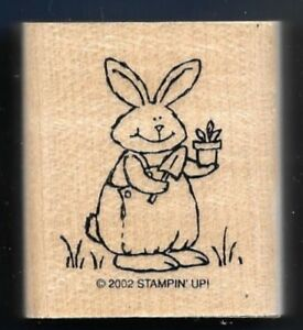 GARDENER-BUNNY-RABBIT-Pot-Plant-Spring-Country-Life-STAMPIN-UP-2002-RUBBER-STAMP