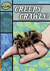 Rapid Stage 3 Set B: Creepy, Crawly (Series 2) by Alison Hawes (Paperback, 2007)