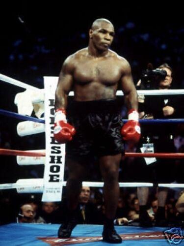 Mike Tyson Amazing New Boxing 10x8 Photo