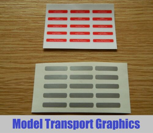 Self Adhesive Nameplates for Hornby Virgin Pendolino Class 390 train OO Scale