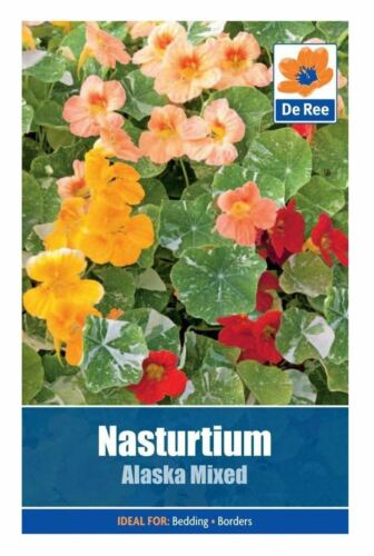 De Ree Seeds Collections Flower Seeds Nasturtium Alaska Mixed