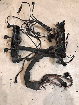 00 -'03 E39 BMW 540i M62TU Motor Arnés de cableado 4.4L V8 ...  Standalone Wiring Harness on alpine stereo harness, safety harness, fall protection harness, oxygen sensor extension harness, cable harness, dog harness, obd0 to obd1 conversion harness, pony harness, amp bypass harness, pet harness, radio harness, engine harness, maxi-seal harness, suspension harness, electrical harness, battery harness, nakamichi harness,