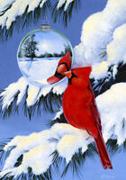 Cardinal's Reflection Winter Bird Yard Garden Flag 12 X 18