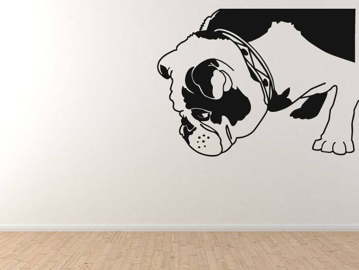 Show Dog Breeds - Brit the English Bulldog - Vinyl Wall Decal