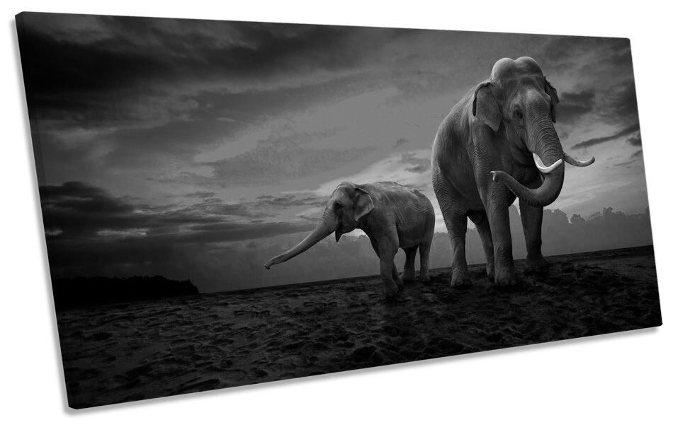 Elephants Sunset Africa Safari B&W PANORAMIC CANVAS WALL ART Framed Print