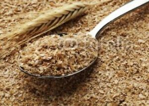 10Lbs Wheat Bran/Mids. Mealworm & Superworms, Food and bedding. Free Shipping!