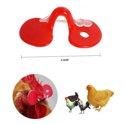 10pcs Creative Chicken Eyes Glasses Avoid Hen peck each other chicken farm 55mmV
