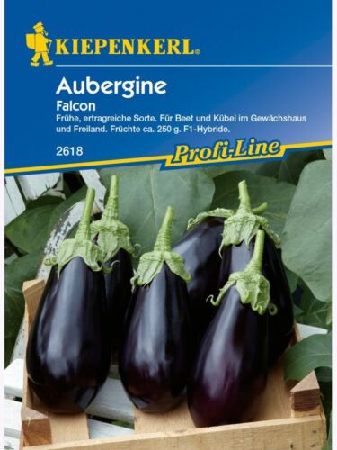 "Aubergine /"" Falcon /"" Kiepenkerl 2618 Beet u Kübelpflanze  hoher Ertrag Samen"