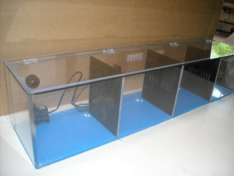 Acrylic Creations 48 12 12 Divider tank with hinged lid