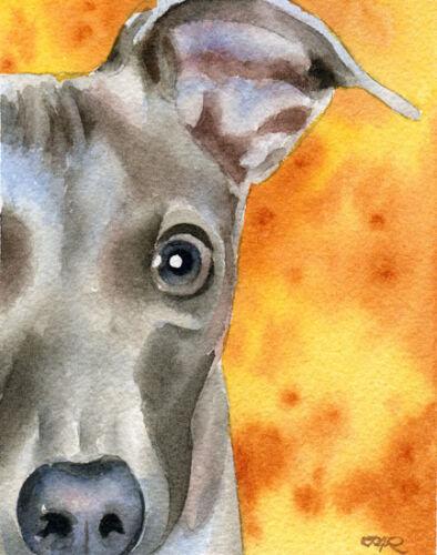 ITALIAN GREYHOUND DOG OVERSIZED Art Print by Artist DJR