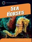 Sea Horses by Samantha Bell (Hardback, 2014)