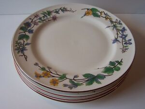 Citation Woodhill Set Of 4 Dinner Plates Nice 10 12 Retired