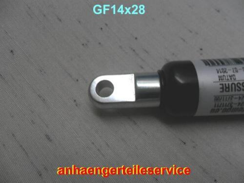 La presión del gas muelle 750n adecuada Böckmann humbaur caballos seguidores l:570mm l30280750