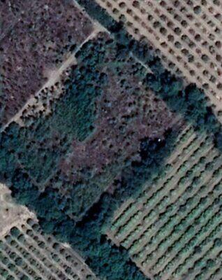Gran Oportunidad Huerta en Venta a 7km cabecera de Gral Terán $600mil por hectárea (6.5 hectáreas)