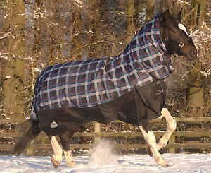 Details About Masta Turnoutmasta 350g Fixed Neck Winter Heavyweight Horse Turnout Rug Blanket