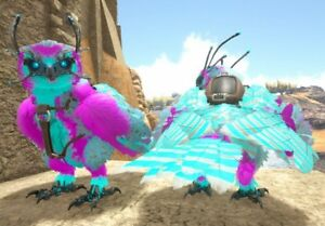 Details about Ark Survival Evolved Xbox One PvE x2 Cotton Candy Fertilized  Snow Owl Eggs