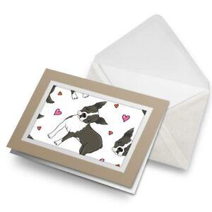 Greetings-Card-Biege-Boston-Terrier-Puppy-Fun-Dog-3130