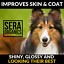 thumbnail 6 - Calming Hemp & Turmeric Oil Dogs & Cats Joint Care Pain Relief Arthritis (50ml)