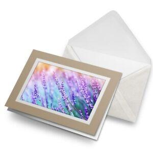 Greetings-Card-Biege-Purple-Lavender-Flower-Field-16653