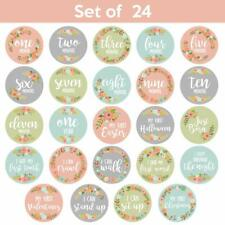 Baby Milestone Monthly & Holiday Stickers For Photos Floral No Glare 24 Pack