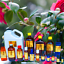 3ml-Essential-Oils-Many-Different-Oils-To-Choose-From-Buy-3-Get-1-Free thumbnail 17