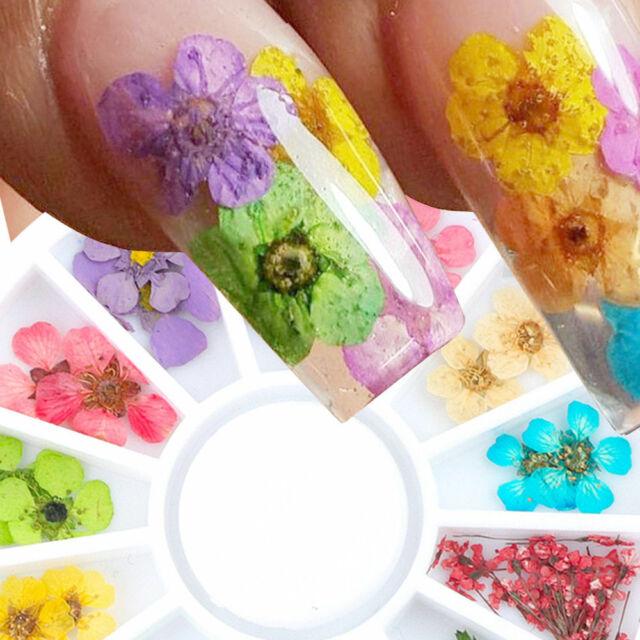 Real Dry Dried Flower Leaves 3D UV Gel Tips Nail Art Wheel Decoration Tools DIY