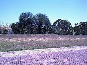 Terreno en Col. Lagunas de Miralta.