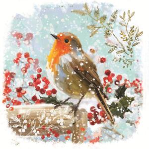 Pack de 8 Robin British Heart Foundation Charity Cartes de Noël de Noël Carte