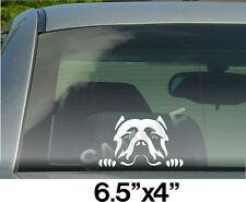 Pitbull Head 001 Vinyl Decal Sticker Car Truck Window or Body Stickers, Decals