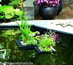 Details Sur Patrimoine Bassin Poisson Jardin Plante Island Jardiniere Panier Flottant Planters Eau Afficher Le Titre D Origine