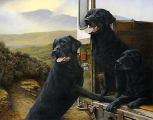 Nigel-Hemming-WILD-ROVERS-Black-Labradors-Labs-Land-Rover-Landrover-Prints-Art