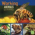 Working Animals of the World by Tammy Gagne (Hardback, 2015)